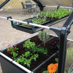 Plateau à semis pour potager de jardin